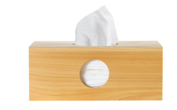 Hinoki Tissue Box Cover